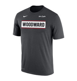 NIKE NIKE Dri-FIT Cotton SS Tee in Anthracite