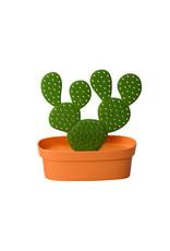 Qualy Cactus Accessories Tray