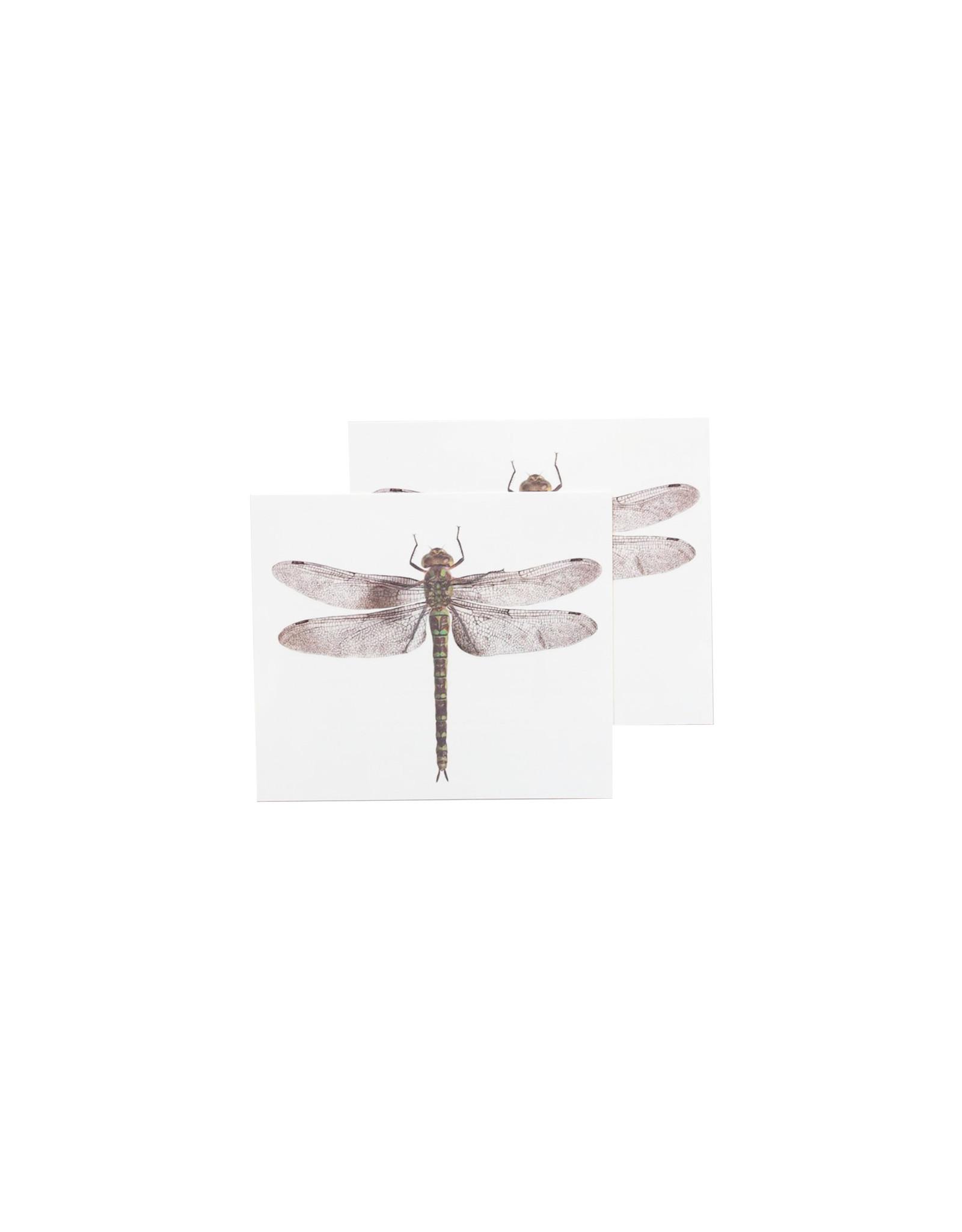 Tattly Dragonfly Set of 2