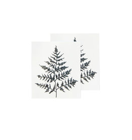 Tattly Fern Set of 2