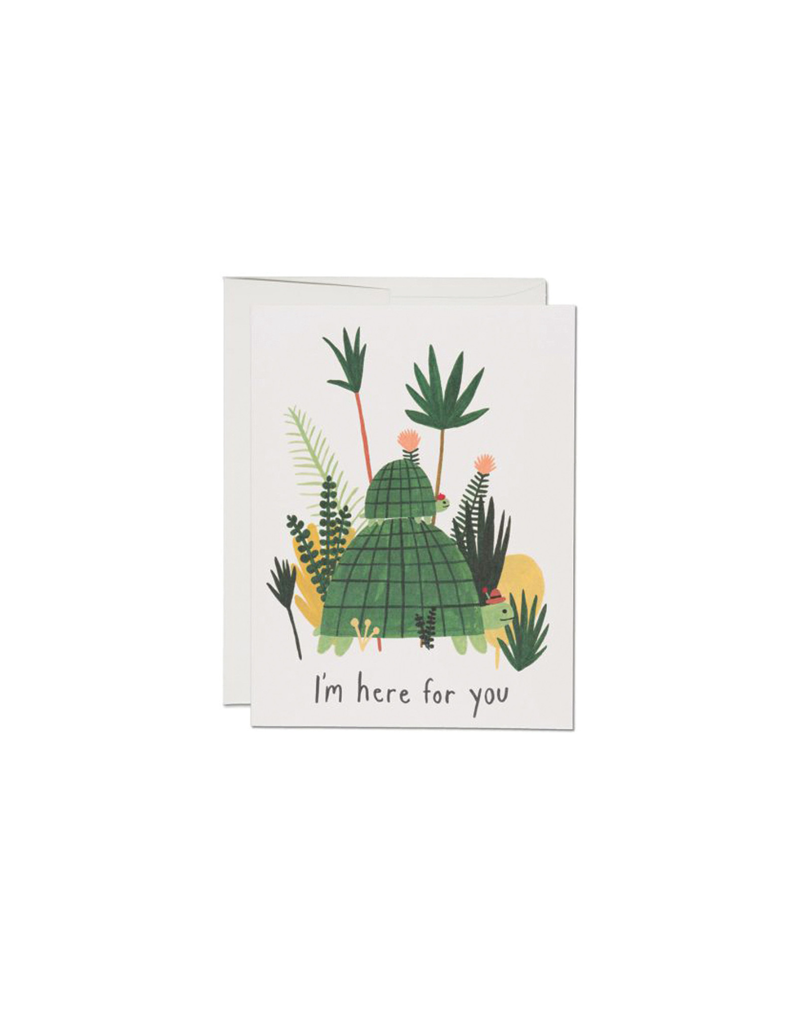 Red Cap Here For You Turtles Sympathy Card