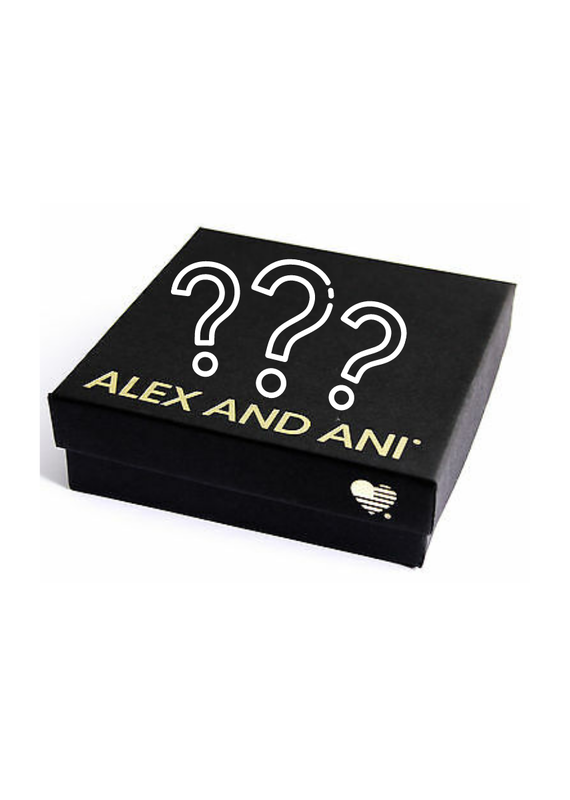 ALEX & ANI Alex & Ani Mystery Box