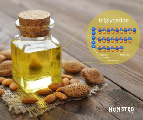 oil triglycerides