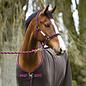 HORSEWARE IRELAND HORSEWARE AMIGO PADDED HALTER