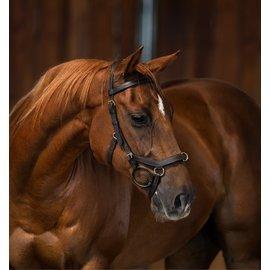 HORSEWARE IRELAND HORSEWARE MICKLEM MULTI W/RUB REINS