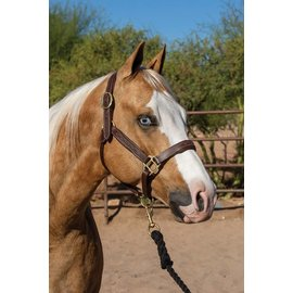 PROFESSIONAL'S CHOICE PROFESSIONAL'S CHOICE FANCY STITCHED PADDED LEATHER HALTER