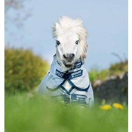 HORSEWARE IRELAND HORSEWARE AMIGO PETITE BUG RUG FLY SHEET*clr*
