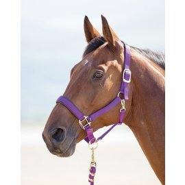 SHIRES SHIRES TOPAZ NYLON HALTER WITH BREAKAWAY