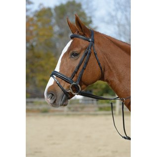SHIRES SHIRES BRIDLE WITH FLASH *CLR*