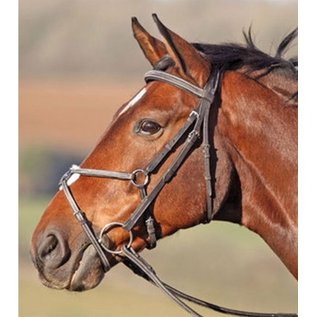 SHIRES SHIRES PHOENIX FIGURE 8 BRIDLE WITH STITCH PADDED *CLR*