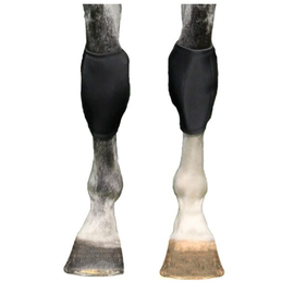 BACK ON TRACK BACK ON TRACK EQUINE KNEE BOOTS-PAIR