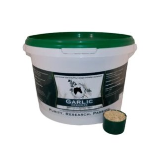 HERBS FOR HORSES GARLIC BY HERBS FOR HORSES
