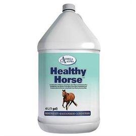 OMEGA ALPHA HEALTHY HORSE BY  OMEGA ALPHA