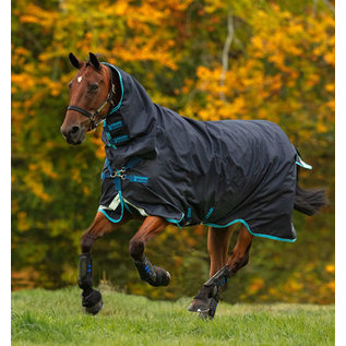 HORSEWARE IRELAND HORSEWARE AMIGO BRAVO 12 ALL-IN-ONE LITE (0G)