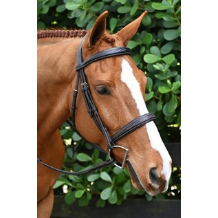 OVATION OVATION ATS SHAPED SQUARE RAISED TAPERED FANCY STITCHED BRIDLE