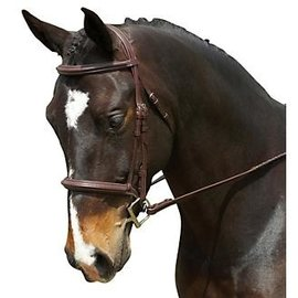 COLLEGIATE COLLEGIATE PLAIN RAISED BRIDLE *CLR*