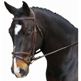 COLLEGIATE COLLEGIATE RAISED FANCY STITCH BRIDLE WITH REMOVABLE FLASH *CLR*