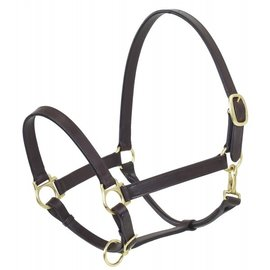 CAMELOT CAMELOT STABLE HALTER