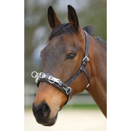 CANADIAN SADDLERY LEATHER LUNGE CAVESON