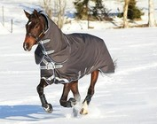 BLANKETS/HORSE CLOTHING
