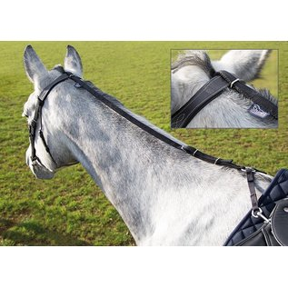 SHIRES SHIRES DAISY REIN ANTI-GRAZING TOOL