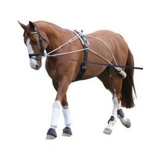 CAN-PRO CAN-PRO LUNGING SYSTEM