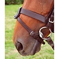 SHIRES SHIRES FLASH ATTACHMENT LOOP WITH BUCKLE