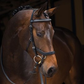 HORSEWARE IRELAND HORSEWARE RAMBO MICKLEM DIAMANTE COMPETITION BRIDLE W/REINS