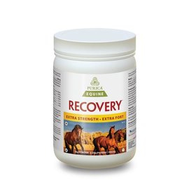 PURICA RECOVERY EQ EXTRA STRENGTH BY PURICA