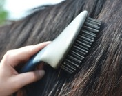 COMBS/TAIL BRUSHES