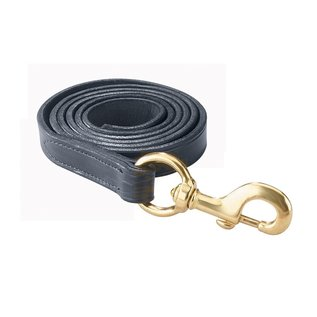 PERRI'S LEATHER PERRI'S LEATHER LEAD WITH SOLID SNAP (NO CHAIN)