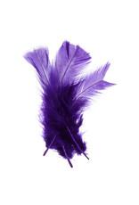 Marabou Feathers Purple 6g