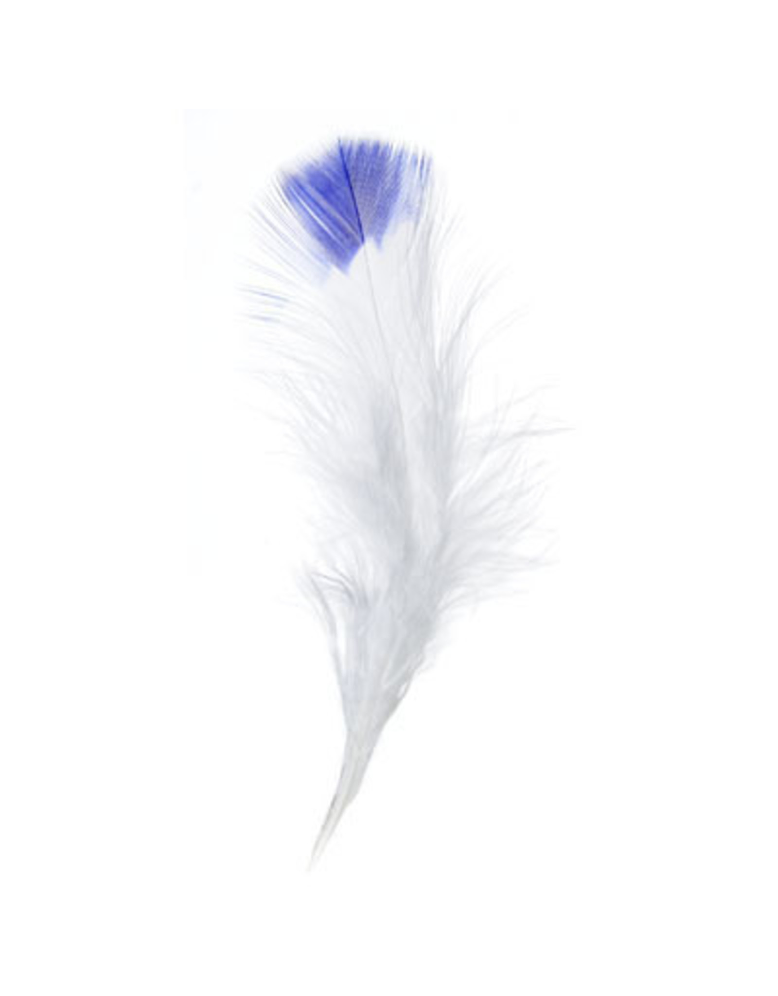 Marabou Feathers 4-6in White Royal Blue Tip  6g