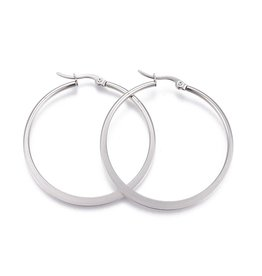 26x24x2mm Earring Hoops  Stainless Steel  x2