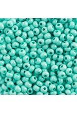 Czech 442021B  6   Seed 250g  Mint Green Chalk Terra