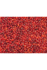 Czech 1602 10 Czech Seed 20g  Red s/l Mix
