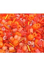 Czech 1001-10  10   Seed 20g Orange Mix