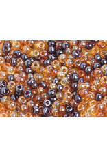 Czech 40138 6   Seed 20g  Brown Lustre Mix