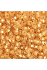 Czech 401736 6   Seed 20g  Gold s/l Matte