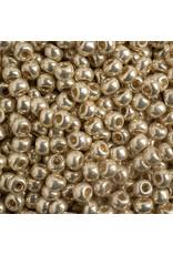 Czech 402296  6   Seed 20g  Silver Metallic