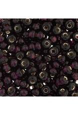 Czech 829276 2  Seed 20g   Purple  s/l