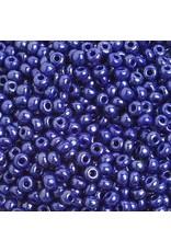 Czech *401904 6  Seed 10g  Opaque Blue Lustre