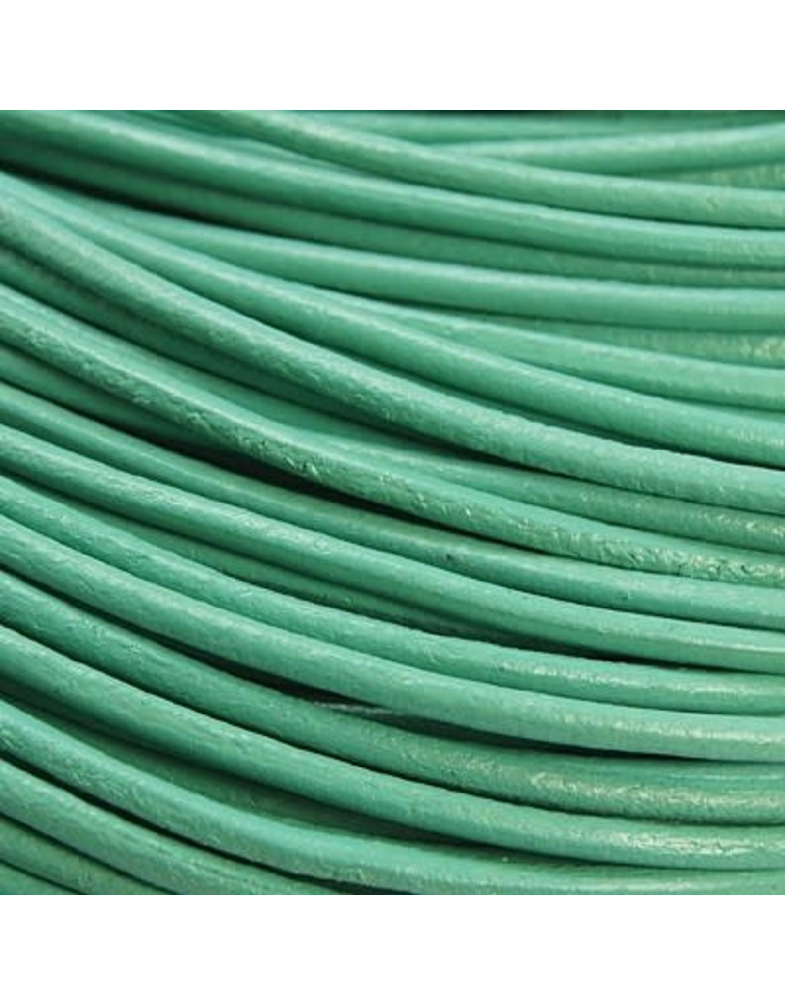 204sb 2mm Leather Light Turquoise Blue 10 meter