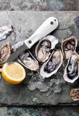 Toadfish Oyster Shucker - White
