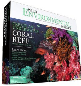 Learning Advantage Create Underwater Coral Reef