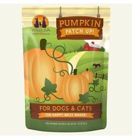 Weruva Pumpkin Patch up