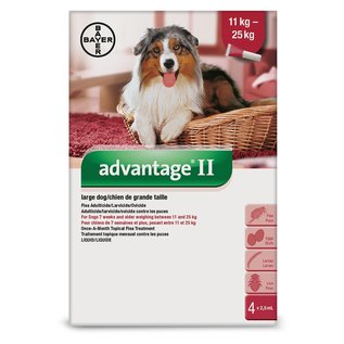 Bayer Advantage II for Large Dogs 11-25KG (4 doses)