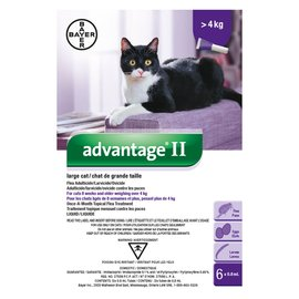 Bayer Advantage II for Large Cats over 4KG (4 doses)