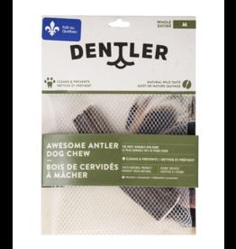 Dentler Antler M