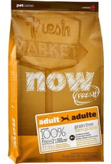 Now Dog - Adult